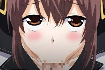 Bitch Gakuen ga Seijun na Hazu ga Nai!! The Animation